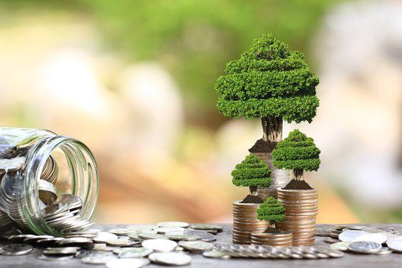 «сопровождение сделки  продажи\дарения земли-ПРОФ БТИ»